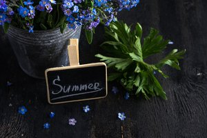 Summer concept with forget-me-not