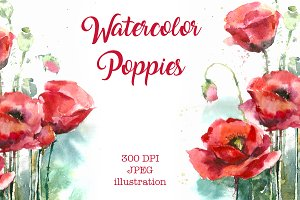 SALE! Watercolor red poppies flowers
