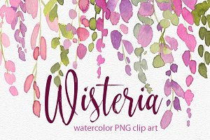 Watercolor wisteria png pink flowers