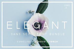 The Elegant Sans Serif Font Bundle