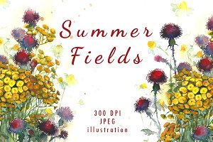 SALE! Watercolor meadow summer field