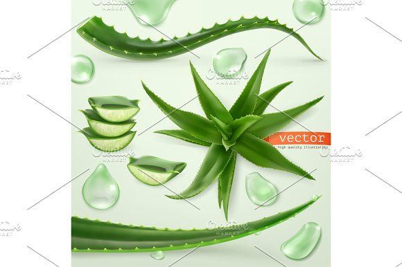 Aloe vera and drop. Vector set