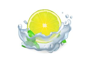 Juicy Lemon or Lime and Leaves of Peppermint Icon
