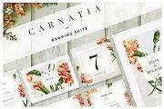 Carnatia - Wedding Suite (Adobe)