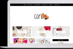 Carina - Feminine WordPress Theme
