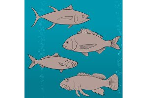 fish icons set. Outline illustration