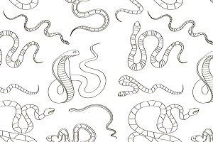 Snake set pattern