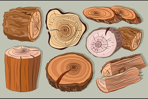 Wood stumps vector set