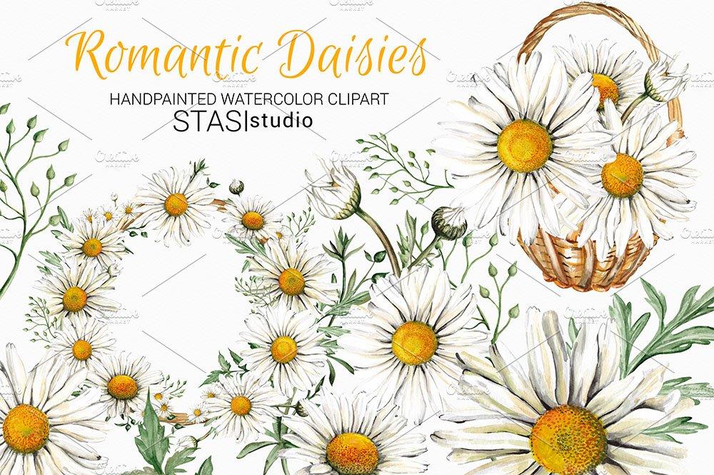 Watercolor Daisies Clipart ~ Illustrations ~ Creative Market