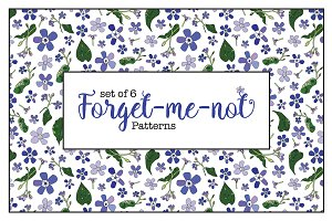 Forget-me-not Patterns