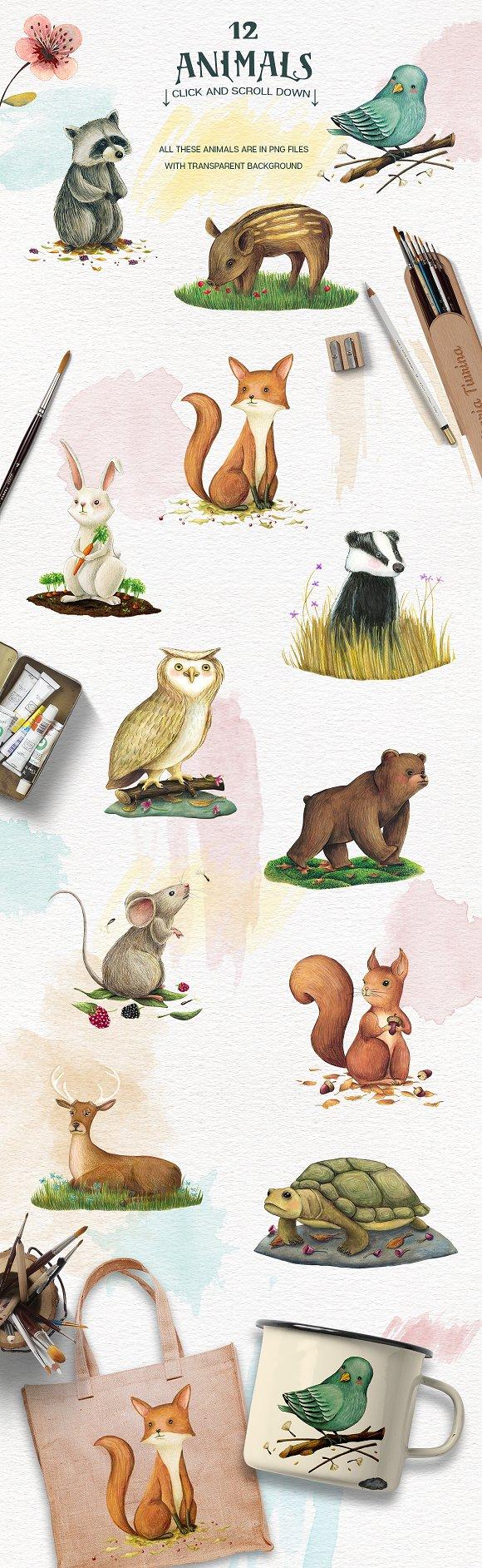 Animals and nature design kit illustrations creative market fandeluxe Choice Image