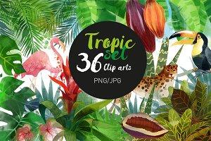 Tropic set