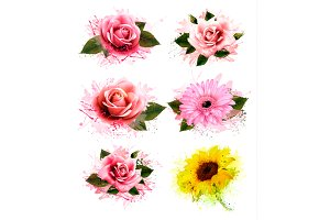 Greeting cards with colorful flowers