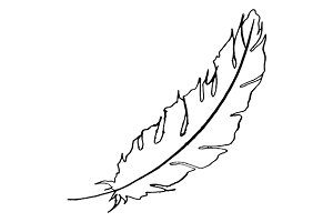 Feather bird line art sketch vector