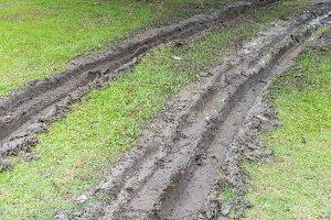 Wheel tracks in green grass field