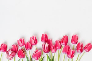 Top view pink tulips
