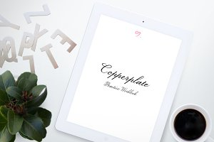 Copperplate Workbook -Beginner's Lvl