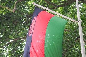 Malawian Flag of Malawi