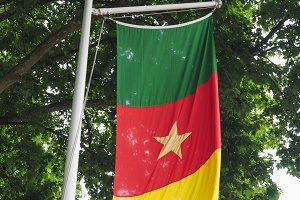 Cameroonian Flag of Cameroon