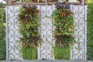 green leaf on wall