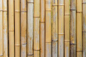 bamboo fence wall texture