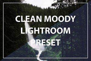 Clean Moody Lightroom Preset