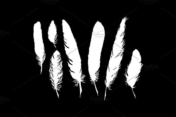 Feather Bird Silhouette Set Vector