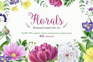 Florals watercolor set