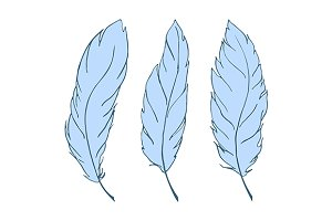 Feather bird line art set vector