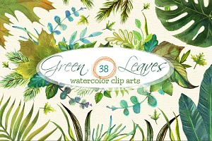 38 Green Leaves Watercolor Clip Arts