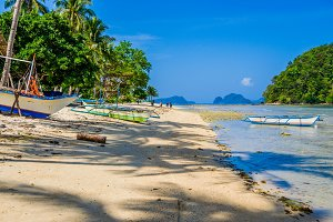 Fishing boats on shore under palms.Tropical island landscape. El- Nido, Palawan, Philippines