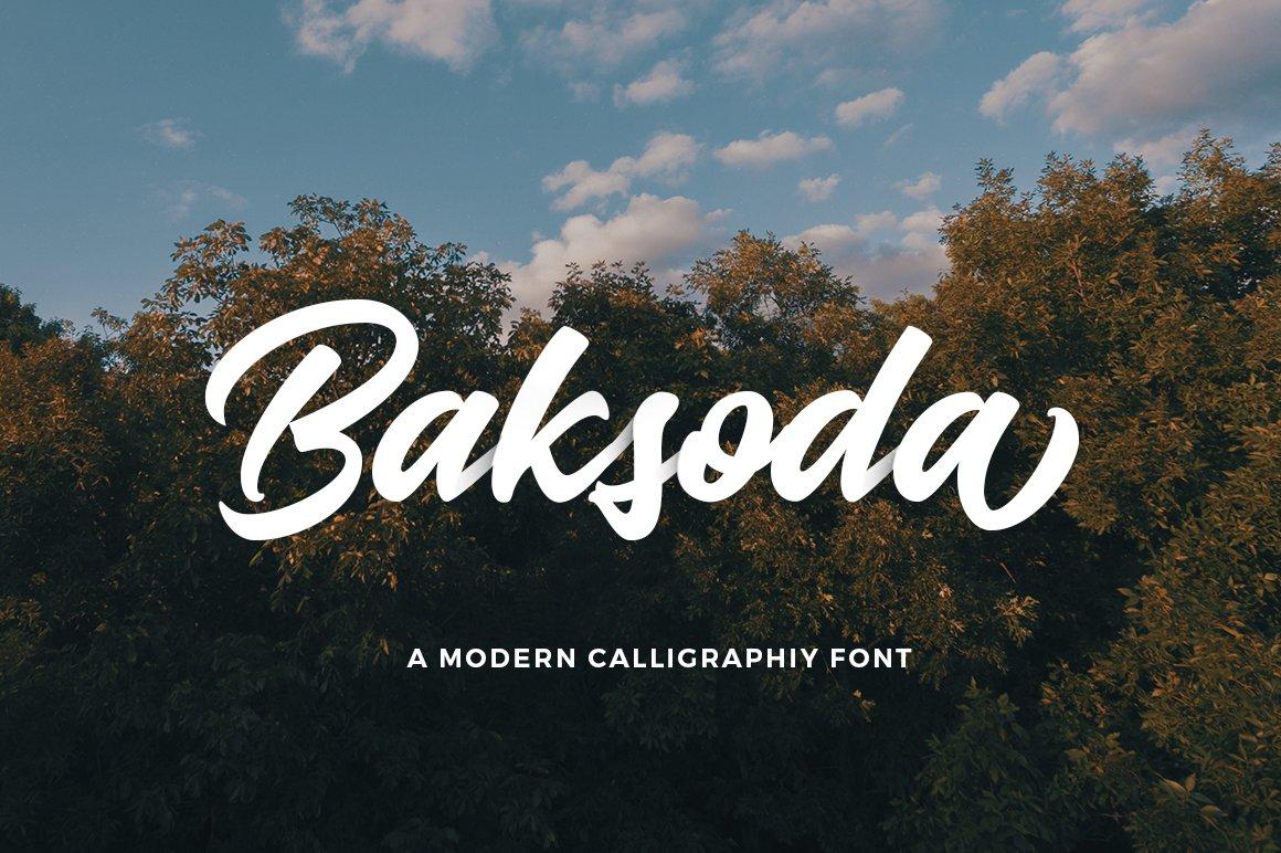 Baksoda script fonts creative market