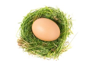 Egg in the nest of grass isolated on white background