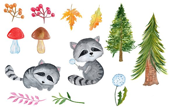watercolour forest animals clipart custom designed illustrations creative market watercolour forest animals clipart
