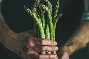 Bunch of fresh seasonal asparagus