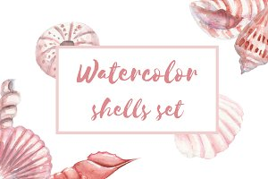 Watercolor shells set