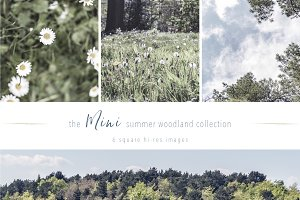Summer Woodland ~ Mini Instagram Set