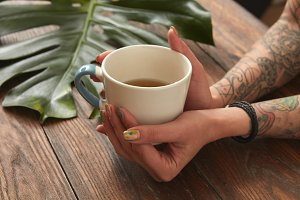 Female hands holding coffee cup