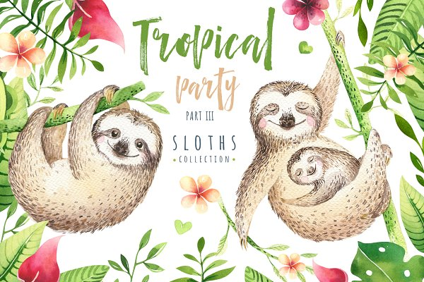 Tropical party III. Sloth collectio…
