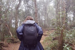 Young girl in raincoat with backpack going on exotic wood trail during travel. Hiking woman walking in tropical wet forest. Follow to female tourist stepping on the jungle path. Rear back view