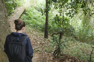 Young girl in raincoat going on wood trail during travel. Hiking woman with backpack walking in tropical wet forest. Follow to female tourist stepping on the jungle path. Rear back view