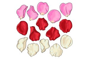 Set of hand drawn white, pink and red rose petals