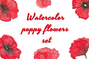 Watercolor poppy flowers set