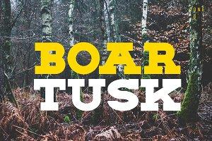 BOAR TUSK Font Family