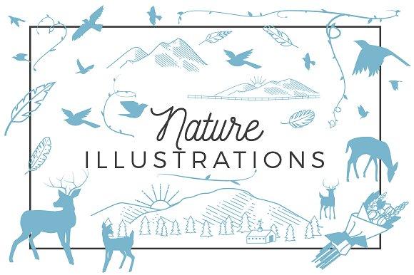 25 Nature Illustrations