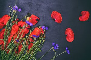 Bouquet of field poppies
