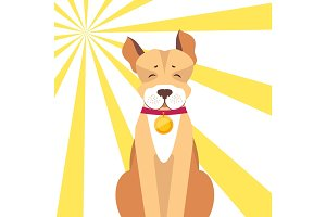 Basenji Dog with Closed Eyes on Sunny Background