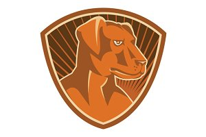 Sheepdog Border Collie Shield Retro