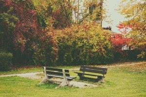 Autumn beautiful park