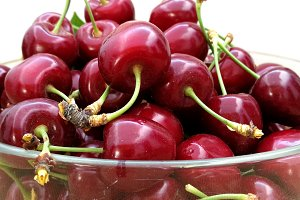 Fresh Cherries on vase
